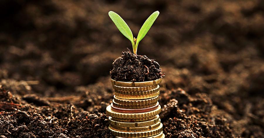 Post This on Social Media: Savings and FAFSA